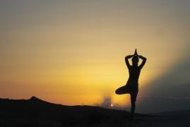 Seminari residenziali: yoga, canto armonico e molto altro.