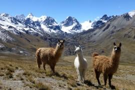 Bolivia dai mille colori