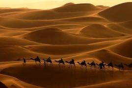 Marocco: Trekking nel deserto, 9 giorni