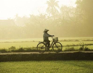 Vietnam: Nord e Centro con Trekking