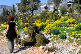 Turchia, Via Licia: Il Cammino delle Orchidee